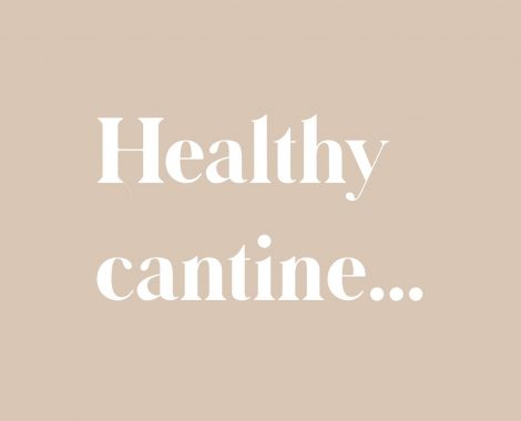 healthy cantine